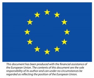 EU flag with text that says This document has been produced with the financial assistance of the European Union. The contents of this document are the sole responsibility of its author and can under no circumstances be regarded as reflecting the position of the European Union.